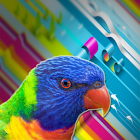 Rainbow Photo Gallery Wall icon