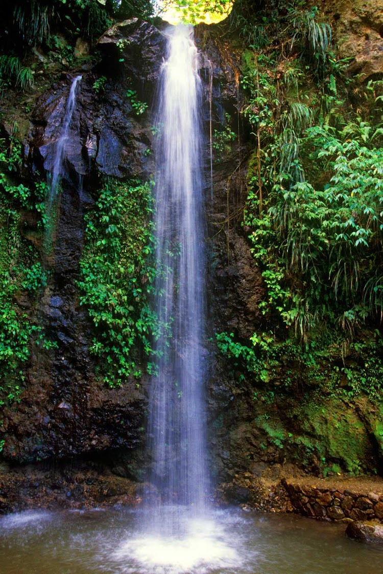 A waterfall on the tropical island of St. Lucia.