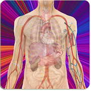 App Anatomy Guide (Pocket Book) APK for Windows Phone