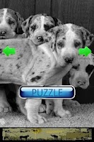 Screenshot of Dog Puzzle