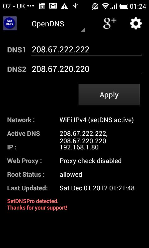 Set DNS - screenshot