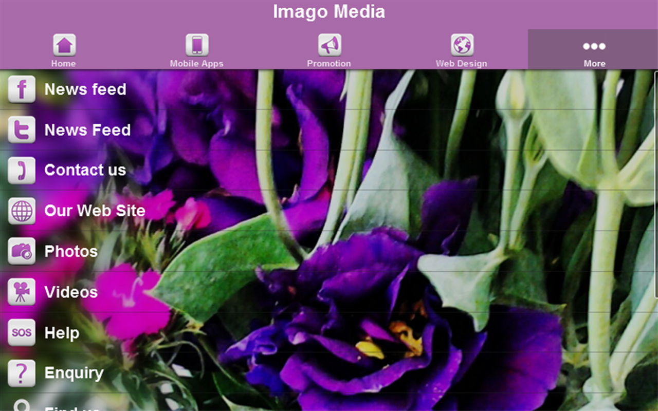 Imago Media- screenshot