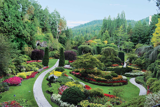 Victoria-BC-Butchart-Gardens - Norwegian Cruise Line's Alaska cruises includes a stop in in Victoria, British Columbia, when you can visit beautiful, world-class Butchart Gardens.