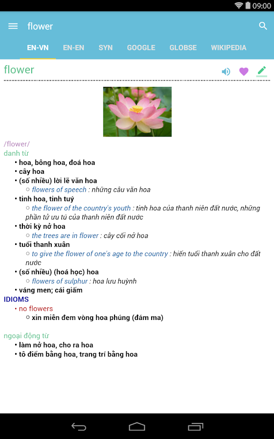 Tu Dien Anh Viet-English Dict- screenshot