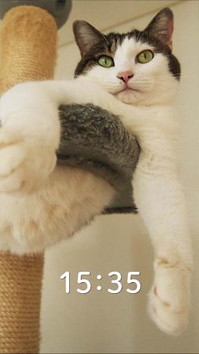 にゃんにゃん時計 Rich