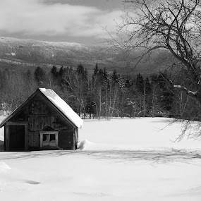 The Coop by Jim Greene - Black & White Landscapes ( farm, mountain, winter, b&w, landscape, black and white )