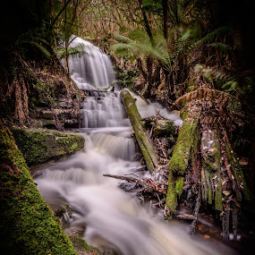 HDR flow by Alan Wright - Landscapes Waterscapes