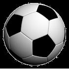 Soccer LiveScores icon