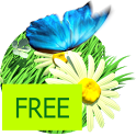 Daisy Field Free icon