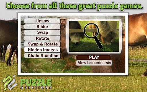 Pony Puzzle Games