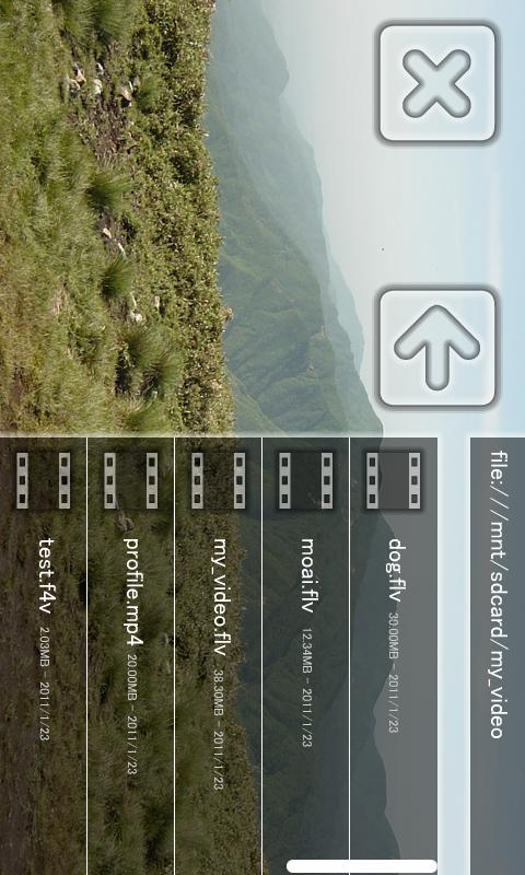 Moai FLV Player-old ver- screenshot
