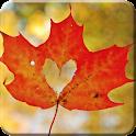 Maple Live Wallpaper PRO HD icon