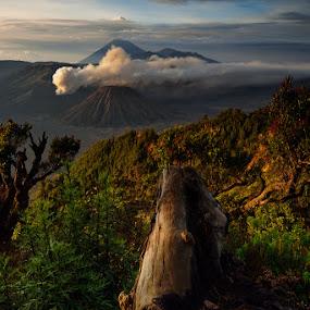Bromo Indonesia by Fahmi Setyawan - Landscapes Mountains & Hills ( indonesia, pananjakan, bromo )