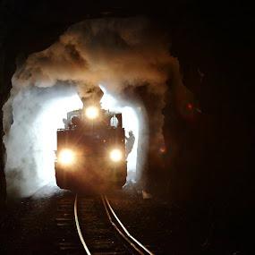 The ghost by George Marcu - Transportation Trains ( maramures, train, romania, steam, tunnel,  )
