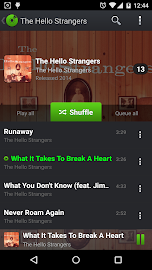 PlayerPro Music Player Screenshot 4