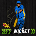 Hit Wicket Cricket - India icon