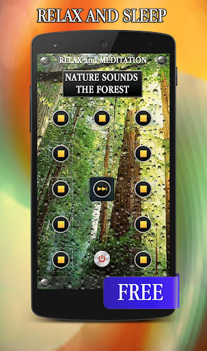 Nature Forest Sounds Relax