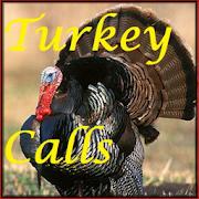 Turkey Calls HD