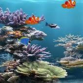 Live Wallpaper Aquarium