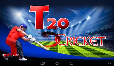 Cricket Fever 1.0.1 screenshot 1607252