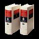 Spanish RAE dictionary