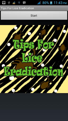 Tips For Lice Eradication