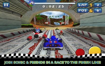 Sonic & SEGA All-Stars Racing Screenshot 1