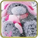 teddy bear under the snowy lwp icon