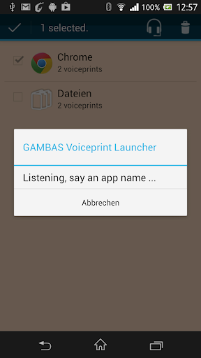 GAMBAS Voiceprint Launcher