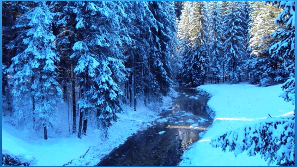 winter wallpapers android apps on google play