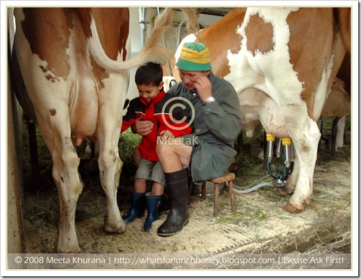 Austria_FarmhouseMilking framed