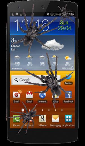 在手機裡的蜘蛛