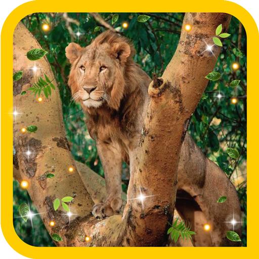 Lion Wild Hunt live wallpaper LOGO-APP點子