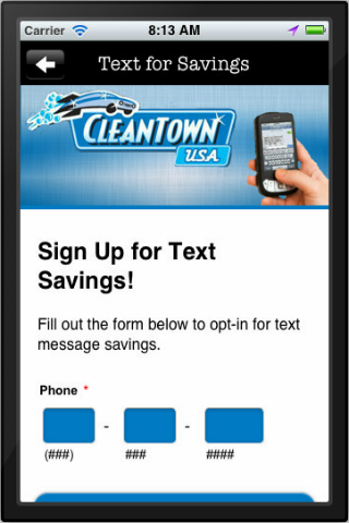 CleanTown USA- screenshot