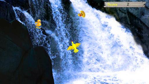 Duck Rescue - the water splash