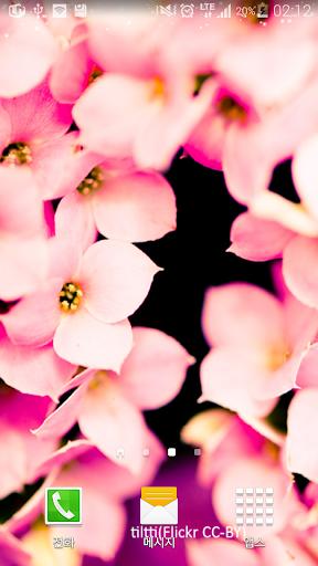 기분이좋아지는분홍잎배경