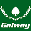 Galway Poker Festival icon