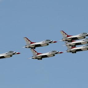 USAF Thunderbirds by Eddie Tuggle - Transportation Airplanes ( plane, airplane, usaf, jet, thunderbirds,  )