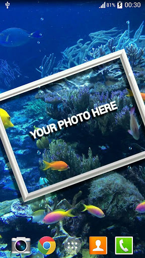 Photo In Water Live Wallpaper