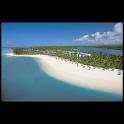 Discover Mauritius logo