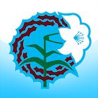 포항성결교회 icon