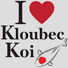 Kloubec Koi icon