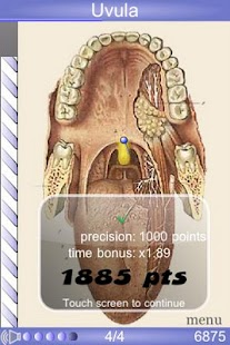Speed Anatomy Quiz Free Screenshot