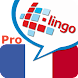L-Lingo Learn French Pro image