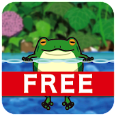 Jumping frogs - Trial