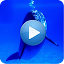 Dolphins - Sound to relax 1.4 APK for Android