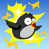 Shock Birds