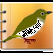 野鳥観察日記