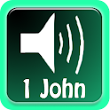 Free Talking Bible - 1 John icon