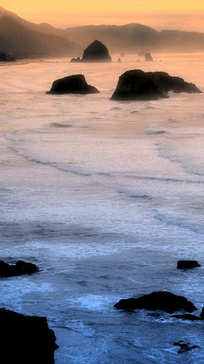 Coastal Beach Live Wallpaper